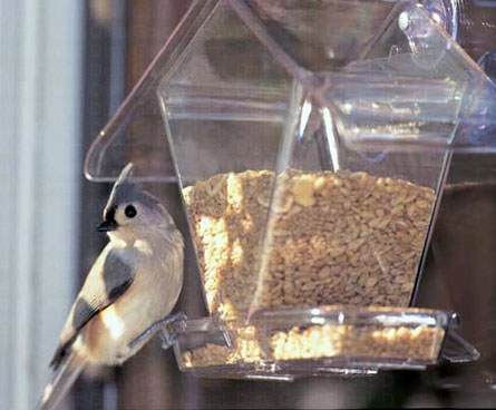 window mounted bird seed feeder