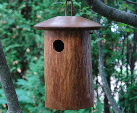 natural bluebird nesting box