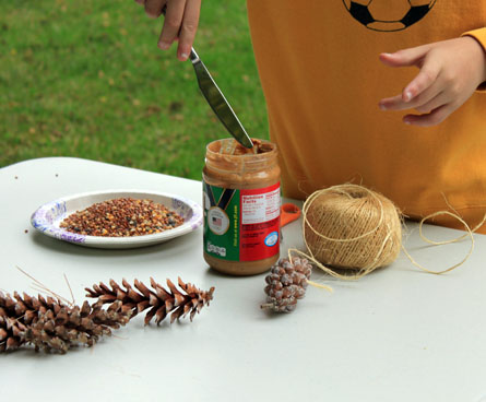 what you need to make a pinecone bird feeder
