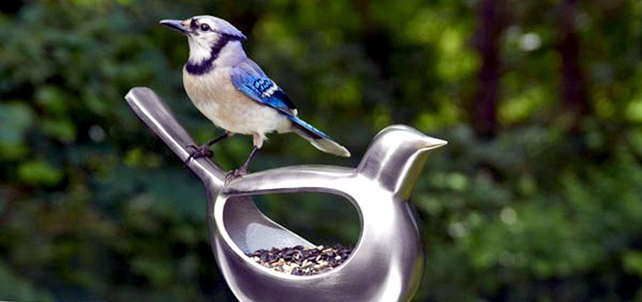 silver bird seed feeder with a bird on it