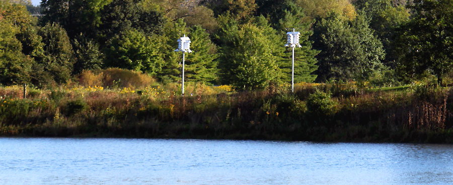 purple martin houses by a lake