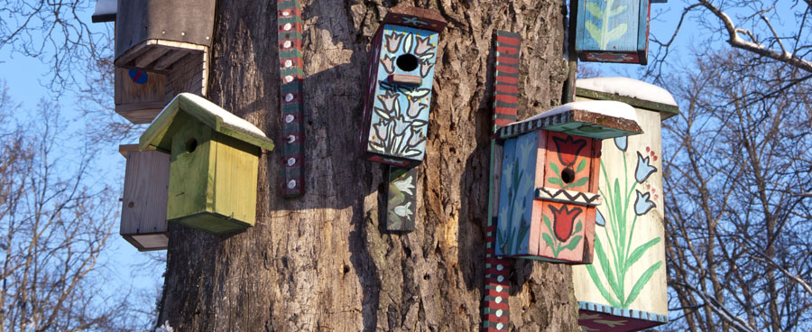 colorful birdhouses in a tree