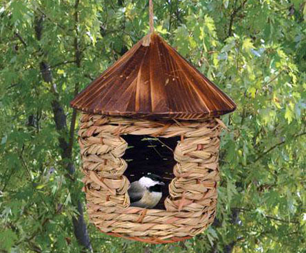 nesting box for winter birds