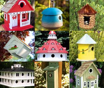 All Bird Houses
