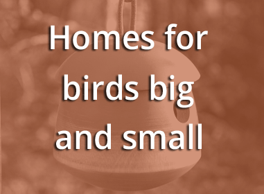 Homes for birds big and small