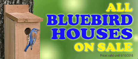 All bluebird houses on sale!