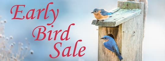 Wild About Birds Early Bird Sale