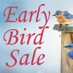 Early Bird Sale at WildAboutBirds.com