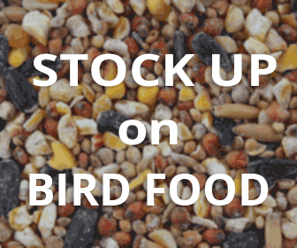 Stock Up on Bird Food at WildAboutBirds.com!