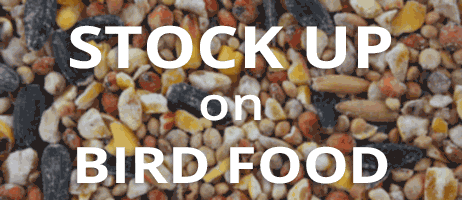 Stock up on bird seed