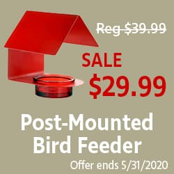 Post Mounted Bird Feeder Sale at WildAboutBirds.com